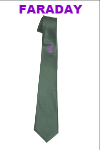 Philip Morant School Faraday House Tie